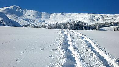 Unberührte Natur beim Schneeschuhwandern in Fiss
