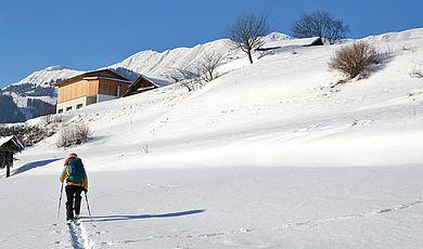 Winter- & Schneeschuhwanderungen - Schneeschuhwandern